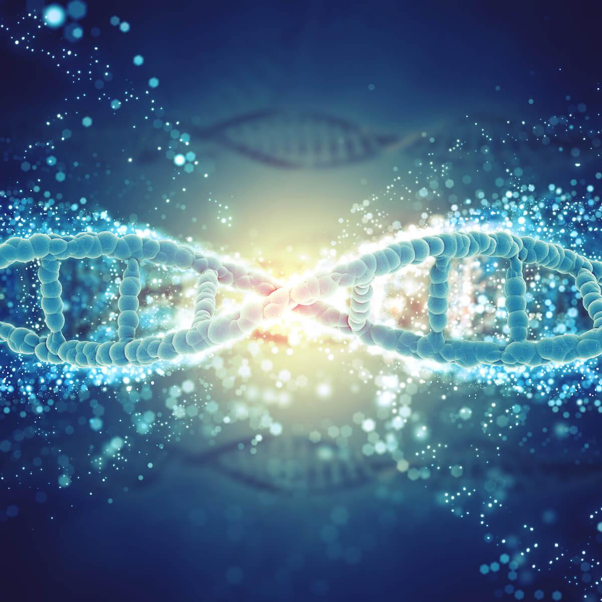 ADN hélice