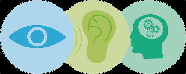Análisis genético de bienestar sensorial