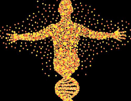 ¿Qué Rasgos Biológicos Analiza EGO?