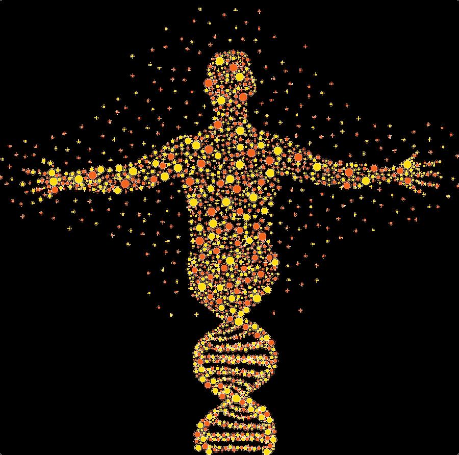 Análisis Genómico