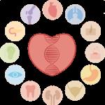 programa de bienestar genes