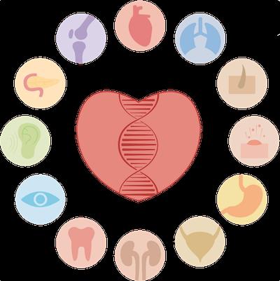 Genómica personal bienestar