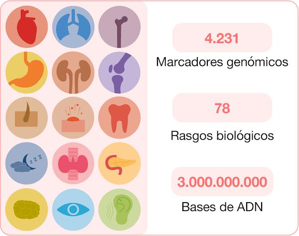 Test de ADN bienestar NGS