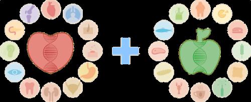 Paquete de Bienestar + Nutrición | Microchip de ADN