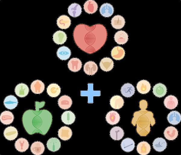Paquete de Bienestar + Nutrición + Rendimiento | Microchip de ADN