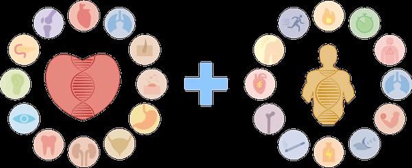 Paquete de Bienestar + Rendimiento | Microchip de ADN