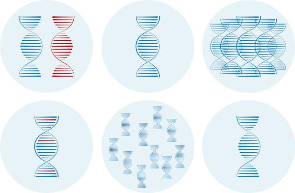 Soluciones Genómicas catálogo