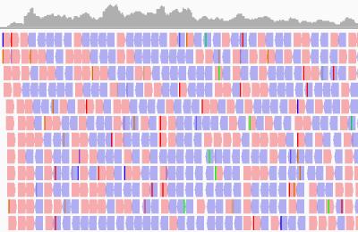 análisis bioinformáticos ensamblaje