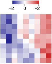 análisis bioinformáticos heatmap