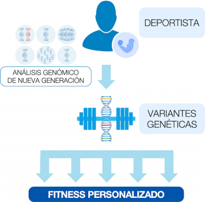 plan de fitness FitGen
