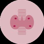 Cancer Paratiroides